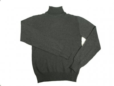 Studio jux turtleneck